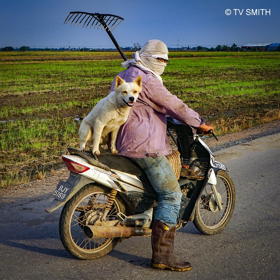The Day I Met Mutt Rempit
