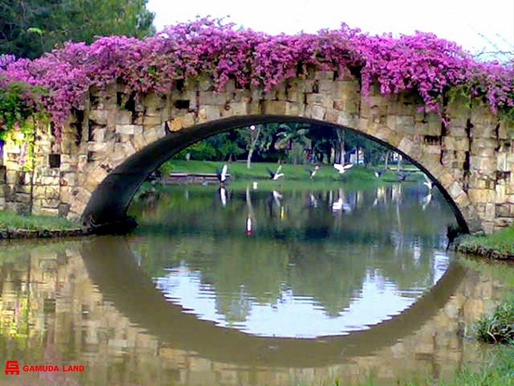 The Flower Bridge Symphony