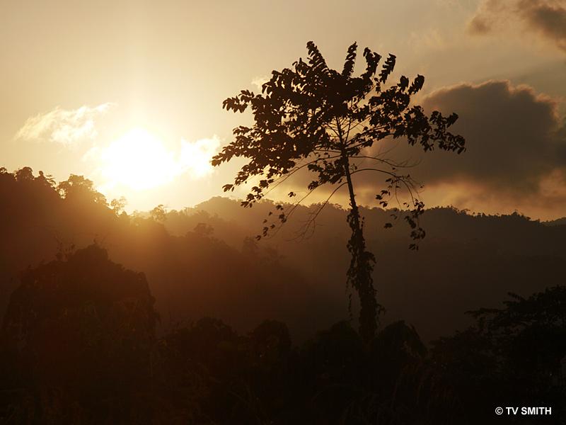 Sunrise at Endau Rompin
